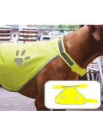 Safety Vest for Dogs Signal Yellow