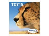 Epson Tintenpatronen C13T07154511 5