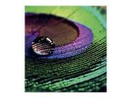Epson Papier, Folien, Etiketten C13S450377 1